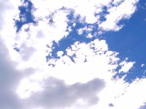 White_blue